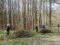 Традиционный субботник на Вязовеньковском захоронении